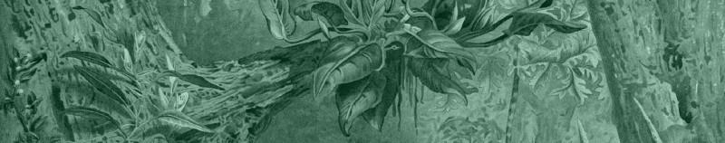 media/image/plakat-historisch-gruen-1920x380.jpg